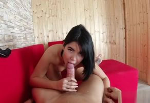 Exotic black-haired taunts stud in..